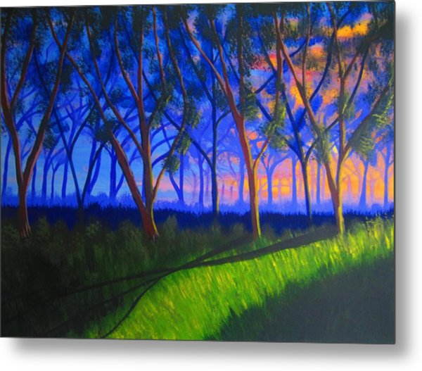 Forest At Sunset Metal Print by Haleema Nuredeen