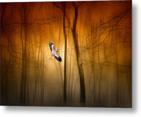 Forest Flight Metal Print
