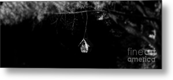 Forest Retreat Metal Print