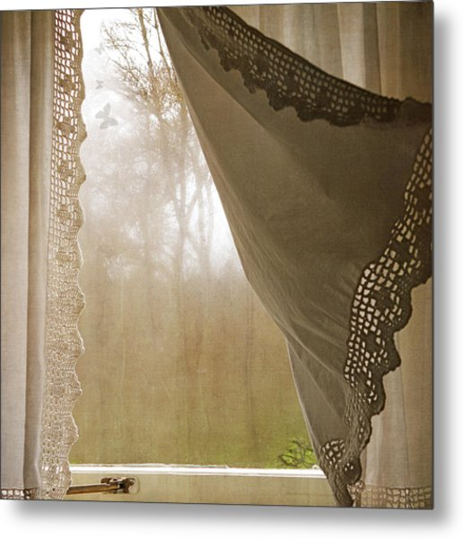 Metal Print featuring the photograph Forest Through The Window by Sally Banfill