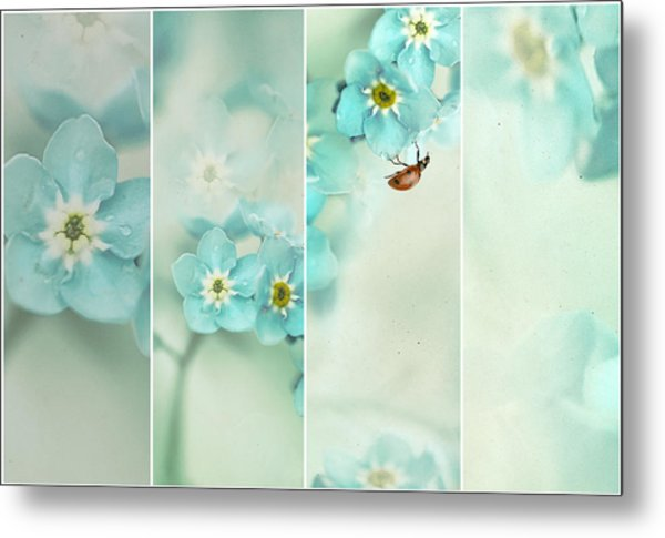 Forget Me Not..... Metal Print