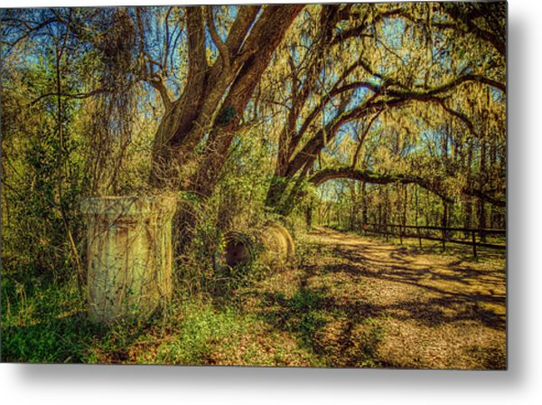 Forgotten Under The Oaks Metal Print