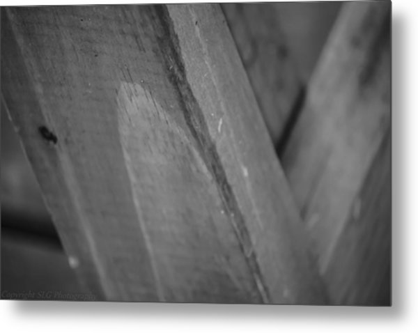 Form And Function Metal Print by Stacie  Goodloe
