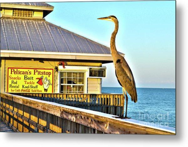 Fort Myers Beach Bird On Pier Metal Print