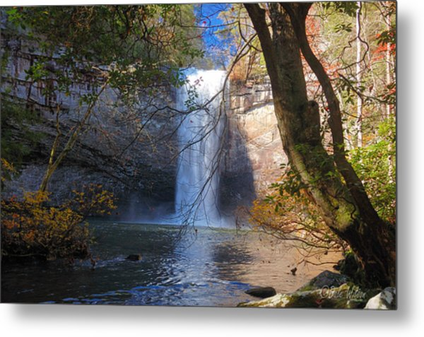 Foster Falls 1 Metal Print by Dale Wilson