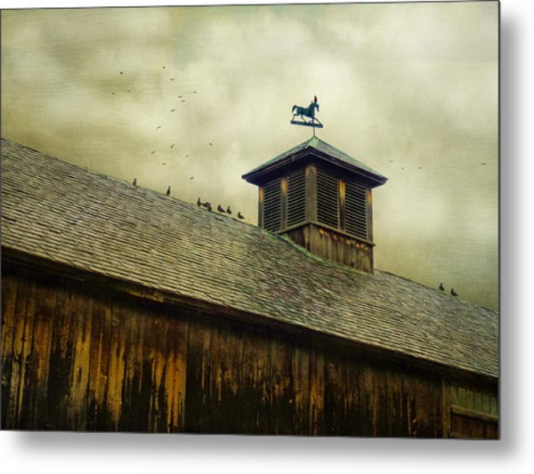 Foul Weathered Roost Metal Print