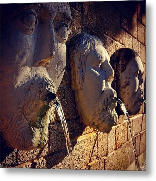 Fountain - Fl Metal Print