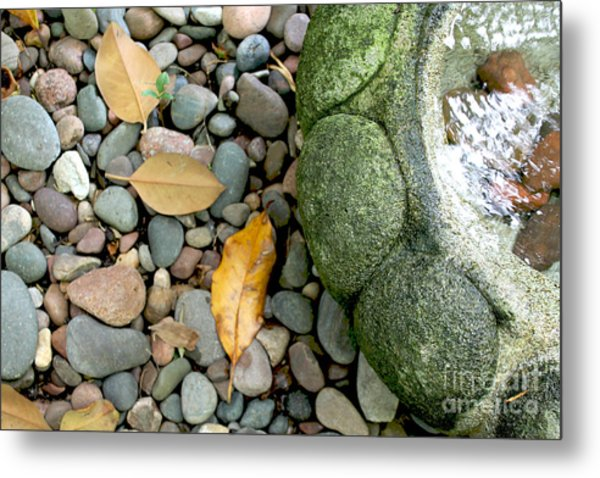 Fountain And Leaves Metal Print