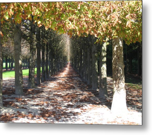 Fountainebleau - Under The Trees Metal Print