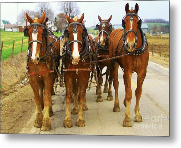 Four Horse Power Metal Print