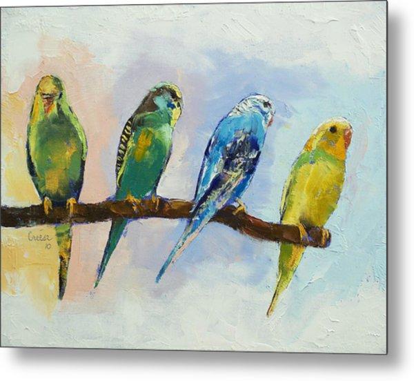 Four Parakeets Metal Print