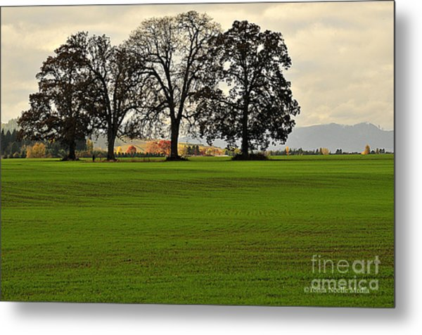 Four Trees Metal Print