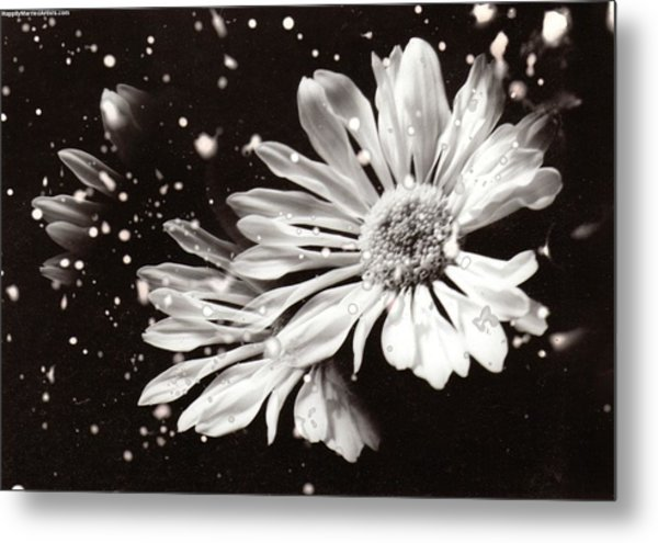 Fractured Daisy Metal Print