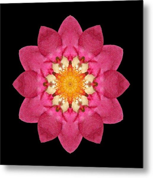 Fragaria Flower Mandala Metal Print
