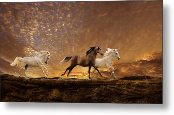 Freed Spirits Metal Print