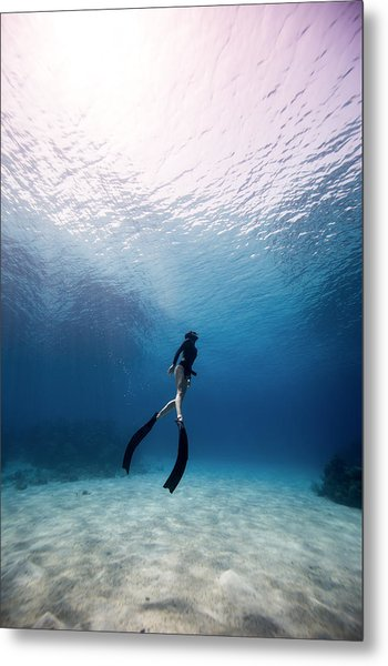 Freediver Metal Print by One ocean One breath