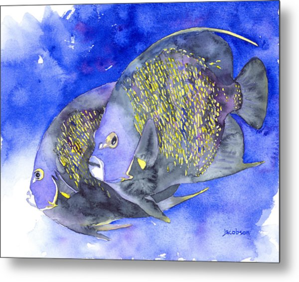 French Angelfish Metal Print