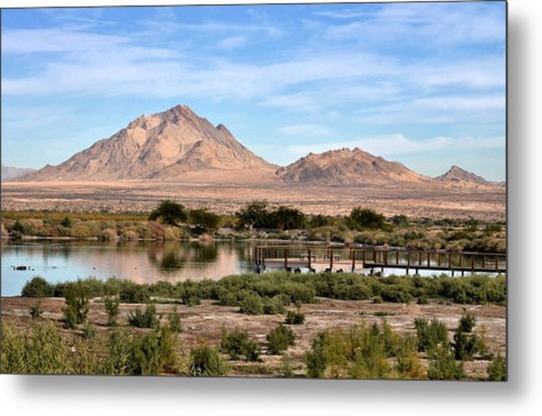 Frenchman Mountain And Oasis Metal Print by Janelle Losoff