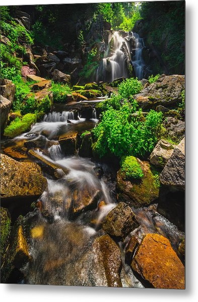 Fresh And Free Flowing Metal Print