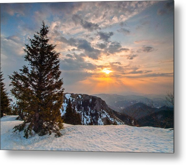 Fresh Morning Metal Print
