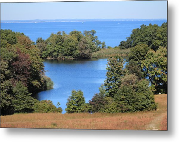 Fresh Pond At Caumsett Metal Print