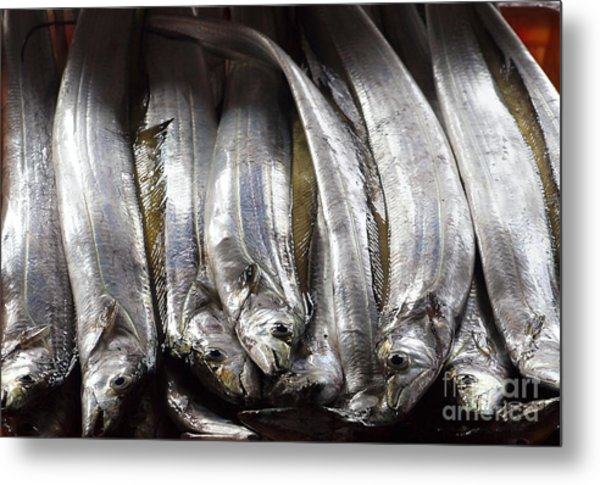 Fresh Ribbonfish For Sale In Taiwan Metal Print