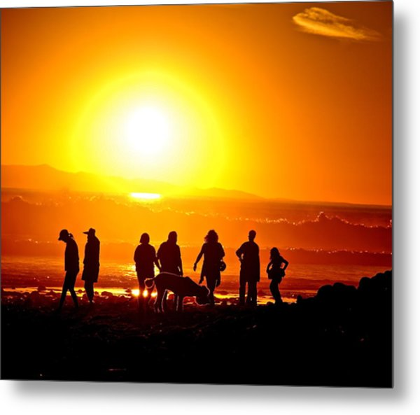 Friends At Sunset Metal Print by Liz Vernand