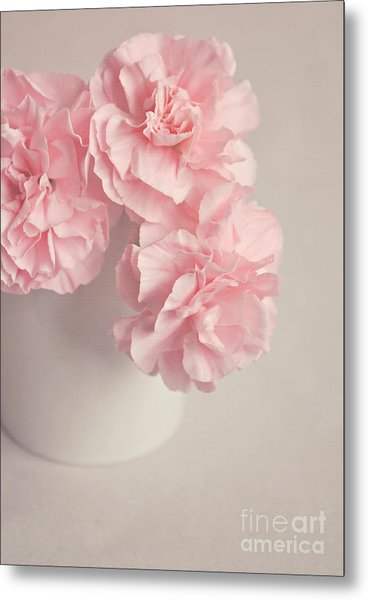 Frilly Pink Carnations Metal Print
