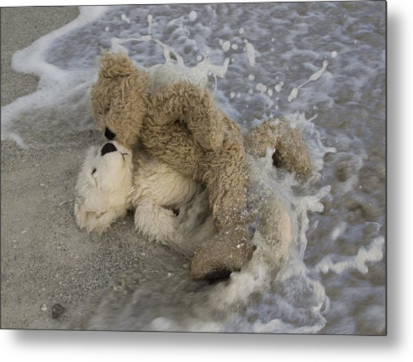 From Bear To Eternity Metal Print by William Patrick