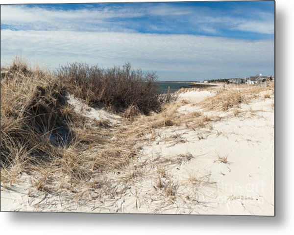 From The Dunes Metal Print