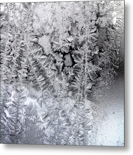 Frost Windowpane In Maine Number One Metal Print