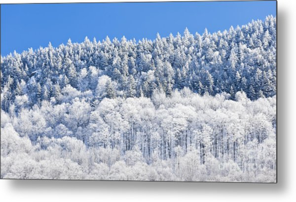 Frosted Mountainside Metal Print