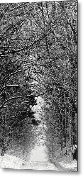 Frosted Steps II Metal Print