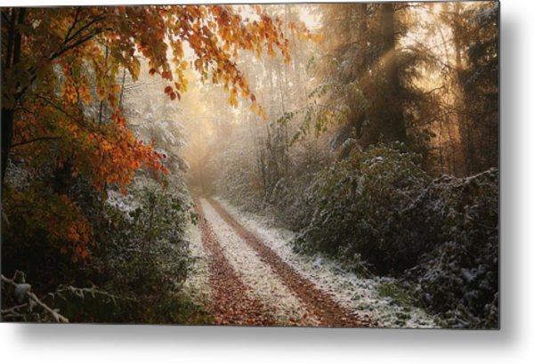 Frosty Fall Metal Print