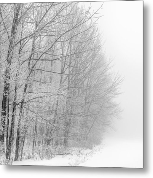 Frosty Forest Frontier Metal Print