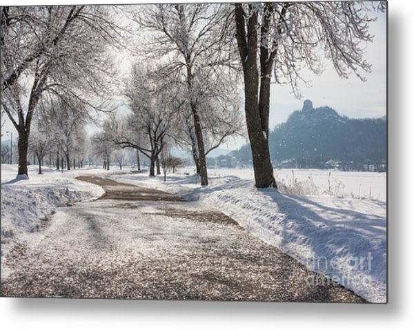 Metal Print featuring the photograph Frosty Stroll With Sugarloaf by Kari Yearous