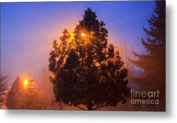Frosty Sunrise 2 Metal Print