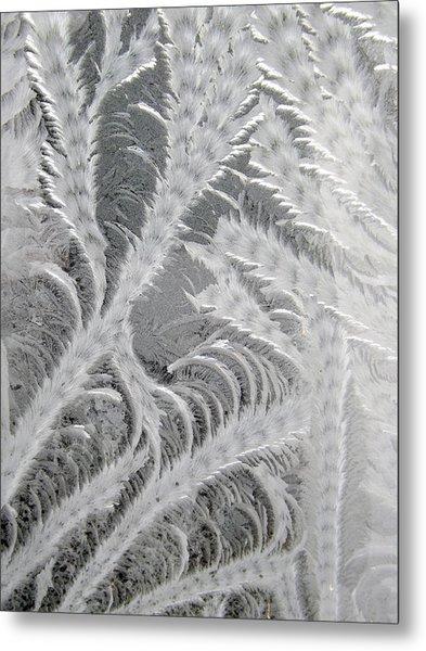 Frosty Window Art Metal Print