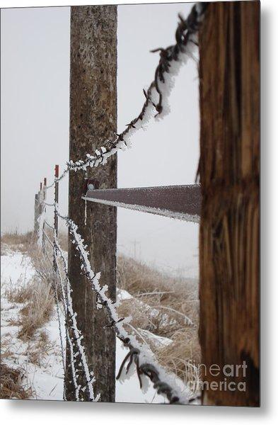 Frozen Fence Line Metal Print