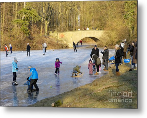 Frozen Lake Krefeld Germany Metal Print by David Davies