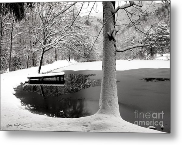 Frozen Pond 2014 Metal Print