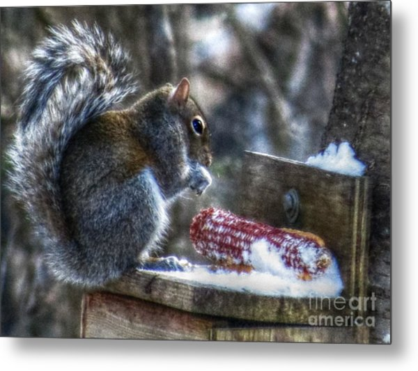Frozen Veggies Metal Print by Missy Richards