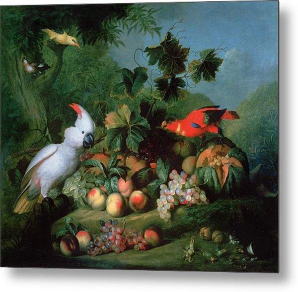 Fruit And Birds Metal Print