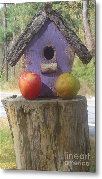 Fruity Home? Metal Print