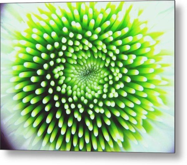 Full Frame Shot Of Beautiful Flower Metal Print by Alyssa Stasiukonis / Eyeem