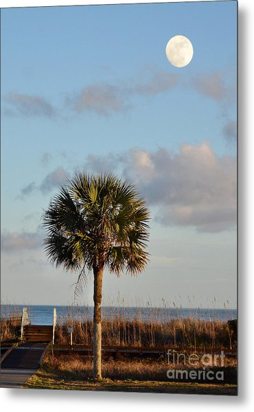 Full Moon At Myrtle Beach State Park Metal Print