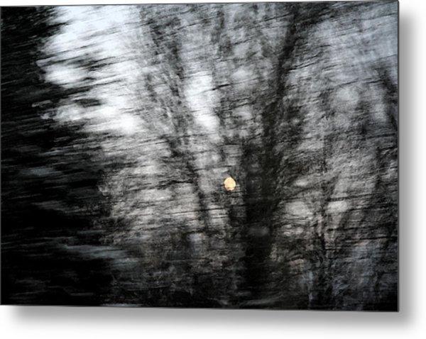Full Moon Behind Trees Metal Print by Carolyn Reinhart