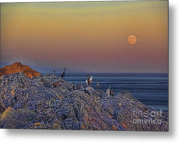 Full Moon Gathering Of Capricorn Metal Print