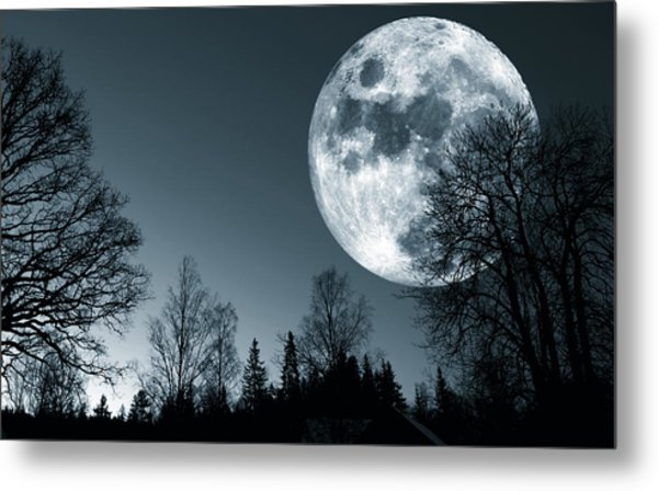 Full Moon Over Dark Forest Metal Print