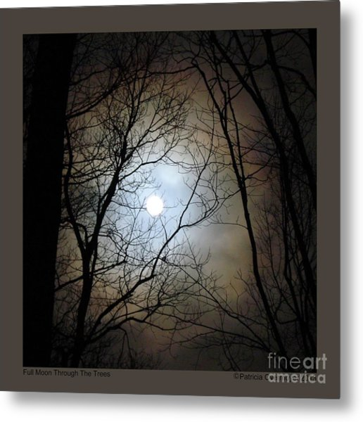Full Moon Through The Trees Metal Print